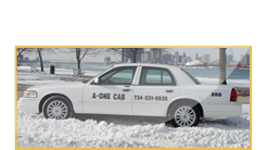 Taxi service from Detroit metropolitan airport, Cab service to Detroit airport